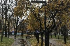 detskoye-avto-gorodok-14