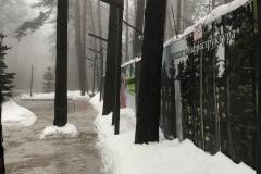 ЖК «Forest Park» Оболонский Район